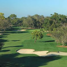 Situated on 900 wooded acres of rolling hills and 70 acres of lakes in the St. Petersburg/Clearwater area on Florida's Gulf Coast, Innisbrook features 72 holes of championship golf.