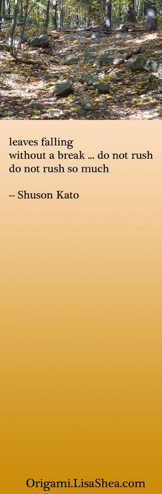 leaves falling  without a break ... do not rush  do not rush so much  -- shuson kato