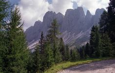 Travel With MWT The Wolf: Most Beautiful Pictures of MWT Val di Funes Summer...