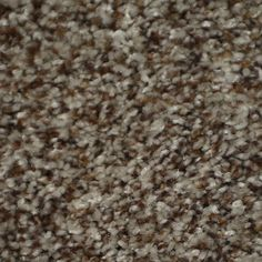 Stainmaster On Broadway Active Family Seminole Plush Carpet Sample Textured Carpet, Patterned Carpet, Boho Living Room, Living Room Carpet, Affordable Carpet, Carpet Remnants, Carpet Stores, Basement Inspiration, Natural Carpet