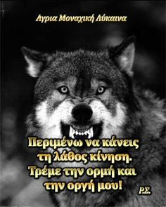 Wolf Quotes, Greek Quotes, Wolves, Life Quotes, Quotes About Life, Quote Life, Wolf, Living Quotes, Quotes On Life