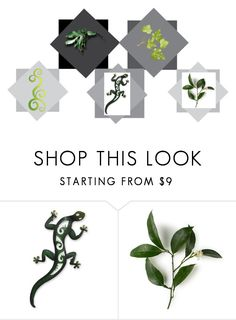 """Green Gift"" by talma-vardi ❤ liked on Polyvore featuring interior, interiors, interior design, home, home decor, interior decorating and NOVICA"