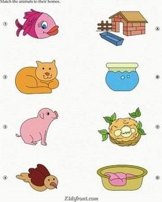Kids Activity -Match Animals(Fish, Cat,dog, bird) with their Home., Black & white Picture You are in Preschool Activity Books, Preschool Writing, Educational Activities For Kids, Animal Activities, Preschool Lessons, Preschool Activities, Kids Learning, Printable Preschool Worksheets, Kindergarten Worksheets