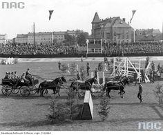 Zawody jeździeckie w Krakowie. Wrzesień 1940