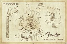 The Original Fender Stratocaster Guitar Diagram Music Poster Fender Stratocaster, Stratocaster Guitar, Fender Guitars, Acoustic Guitars, Leo Fender, Gretsch, Bass Guitars, Guitar Tips, Guitar Art