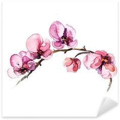 vinilos-la-acuarela-flores-de-orquideas-aislado-en-el-fondo-blanco.jpg (315×315)