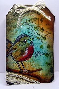 Scribble bird Dina Wakely
