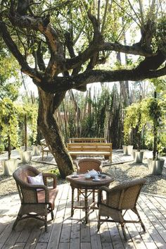 The terrace is installed under an ancient tree - the most beautiful terrace West Side - cotemaison.fr
