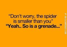 How I feel about spiders.