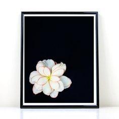 Flower Art, Printable Art, White Flower, Flower Photo, Instant  Download, Black And white, Wall Art, Home Decor