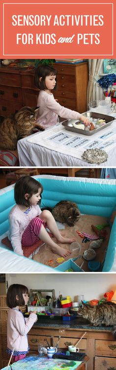 Sensory activities aren't just educational—they're fun, too! And, even pets can join. Me-ow! Here's how your kids can see, hear, taste, touch, and smell with their pets.