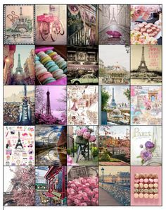 Parisian Theme Sticker Set for Erin Condren Life Planners/Kikki k/ Filofax/ Inkwell/ Plum Planner- HARD COPY