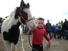 A boy shows off a small pony that is up for sale at the Ballinasloe Horse Fair. It is esti...