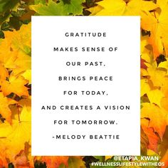 Have a wonderful Day! #gratitude #quote #casuitehearts #empowersocial #thankfulsuitehearts #wellnesslifestylewitheos #etapia_kwan #holisticliving #wellnesswithoils #wellnessadvocate #thanksgiving #november