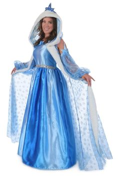 Adult Icelyn Winter Princess Costume from Buycostumes.com