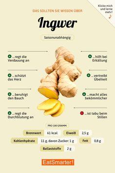 Das solltest du über Ingwer wissen | eatsmarter.de #ernährung #infografik #ingwer #gesund #gesundheit