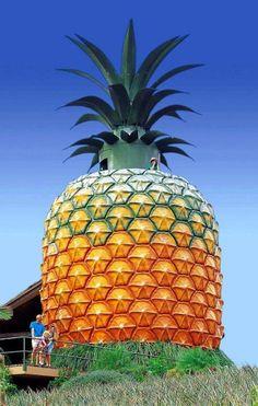 Big Pineapple restoration begins..... Sunshine Coast, Australia