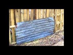 Self Sufficiency  Constructing An Inexpensive Pig Pen & Keeping Pigs