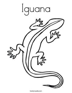 28 Best iguana coloring page images in 2019