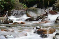 Cordillera Central, boca de los ríos Ciénaga  y Manabao