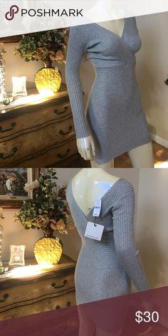 Rose bullet sweater dress NWT LF Dresses