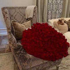 รูปภาพจาก We Heart It #beauty #flowers #roses