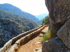 Font des Pi. #Mallorca. Hiking trip. Arrange an excursion here: http://www.senderosdemallorca.com/rutas/index.en.html