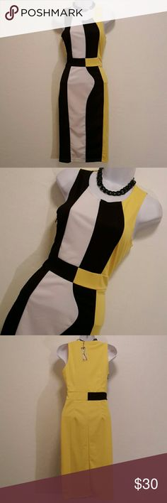 NWT Absolutely & Faith Colorblock Pencil Dress Cool Print, Side Zipper, Bodycon, Colorblock, Sleeveless, Stretch, Very Form Fitting, Dresses