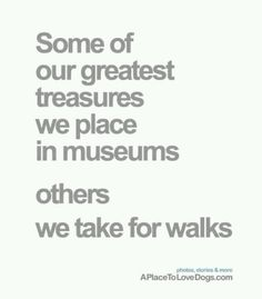 Some of our greatest treasures we place in museums. Others we takes for walks.