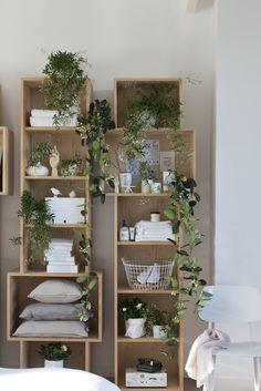 http://www.mooiwatplantendoen.nl/witte-geurende-bloeiers-zijn-woonplanten-van-maart  Photography: Anouk De Kleermaeker  Production & Styling: Leonie Mooren