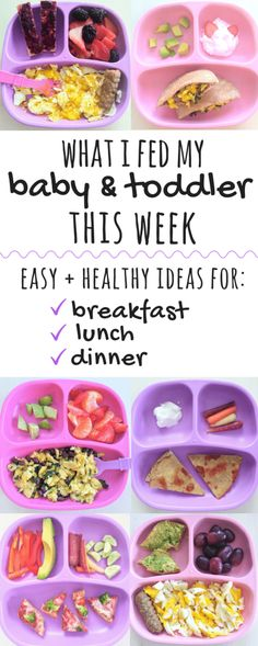 These easy, healthy meal ideas are perfect for babies and toddlers. Inside, get a week's worth of easy toddler meal ideas for breakast, lunch, and dinner! Healthy Toddler Lunches, Healthy Toddler Meals, Toddler Snacks, Easy Healthy Breakfast, Kids Meals, Toddler Dinners, Baby Meals, Toddler Toys, Baby Breakfast