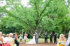 Nothing like a first kiss under the Gingko Tree! Candace   Kevin // A Colorful, Earthy #aldridgegardens Wedding