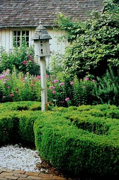 Style of building & plants for potting shed