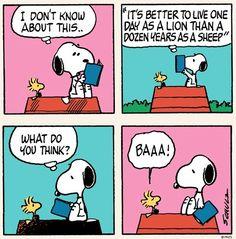 Cartoon via www.Facebook.com/Snoopy