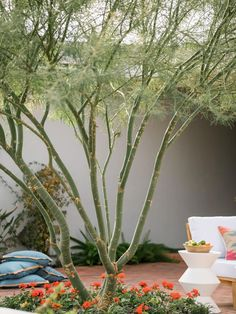 12 Ways to Optimize Your Outdoor Living Spaces   HGTV