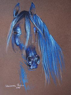Arabian Horse, Paulina Stasikowska - Pastels