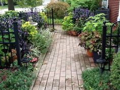 ..a brick walk,iron fence and lots of potted plants!