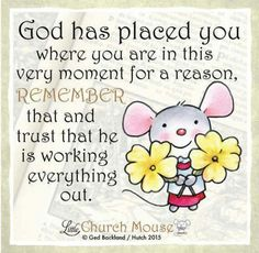 God has placed you where you are in this very moment for a reason, Remember that and trust that he is working everything out. Amen...Little Church Mouse 2 September 2016