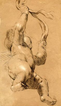 Joshua Reynolds, Sketch of Putto Holding a Sash in Both Hands, Seen from Below. Chalk on paper. Drawing Heads, Life Drawing, Drawing Sketches, Art Drawings, Figure Drawings, Indian Art Paintings, Classic Paintings, Joshua Reynolds, Drawing Studies