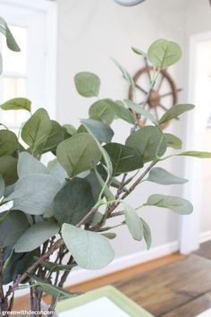 Quick and easy spring decorating ideas! How pretty is this faux eucalyptus?! So perfect for an easy green and blue spring tablescape - you could really use this year round as a centerpiece!