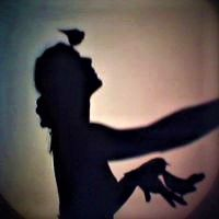 MWS performing The Bird Room Shadow Theater, Light And Shadow, Bird, Room, Bedroom, Shadow Play, Birds, Rooms, Peace