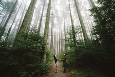 pacific regional park engagement photography - Google Search Vancouver Photos, Regional, Engagement Photography, Country Roads, Canada, Explore, Park, Places, Garden