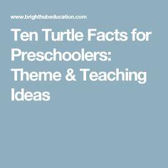Ten Turtle Facts for Preschoolers: Theme & Teaching Ideas