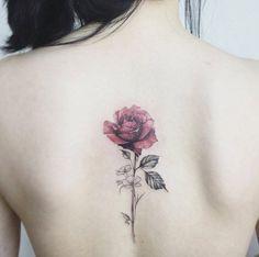 single rose on a back