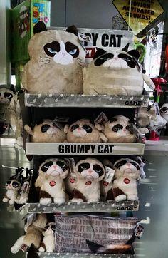 Piney Mountain Gifts has Grumpy Cat stuffed animals!
