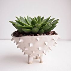 Handmade A Large Spiky Cactus Planter Plant Pot. This is a spiky white handmade ceramic planter , perfect as a cactus or succulent planter for your home .