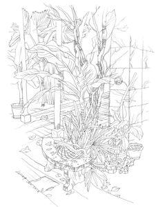 บุ้งกี๋ B3 pencil on A3 paper artist : Jeep Jatuchoti