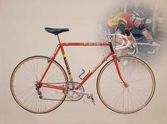 Raleigh Team edition Raleigh Bikes 6a7df9304