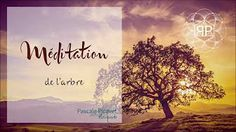 The Quintessential Question - Does Yoga Help With Weight Loss? Healing Meditation, Yoga Meditation, Ayurveda Yoga, Treading Water, Les Chakras, Yoga Nidra, I Feel Good, Poses, Mystic