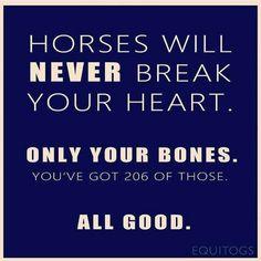 Yep, it's allllllll good. Funny Horses, Calm